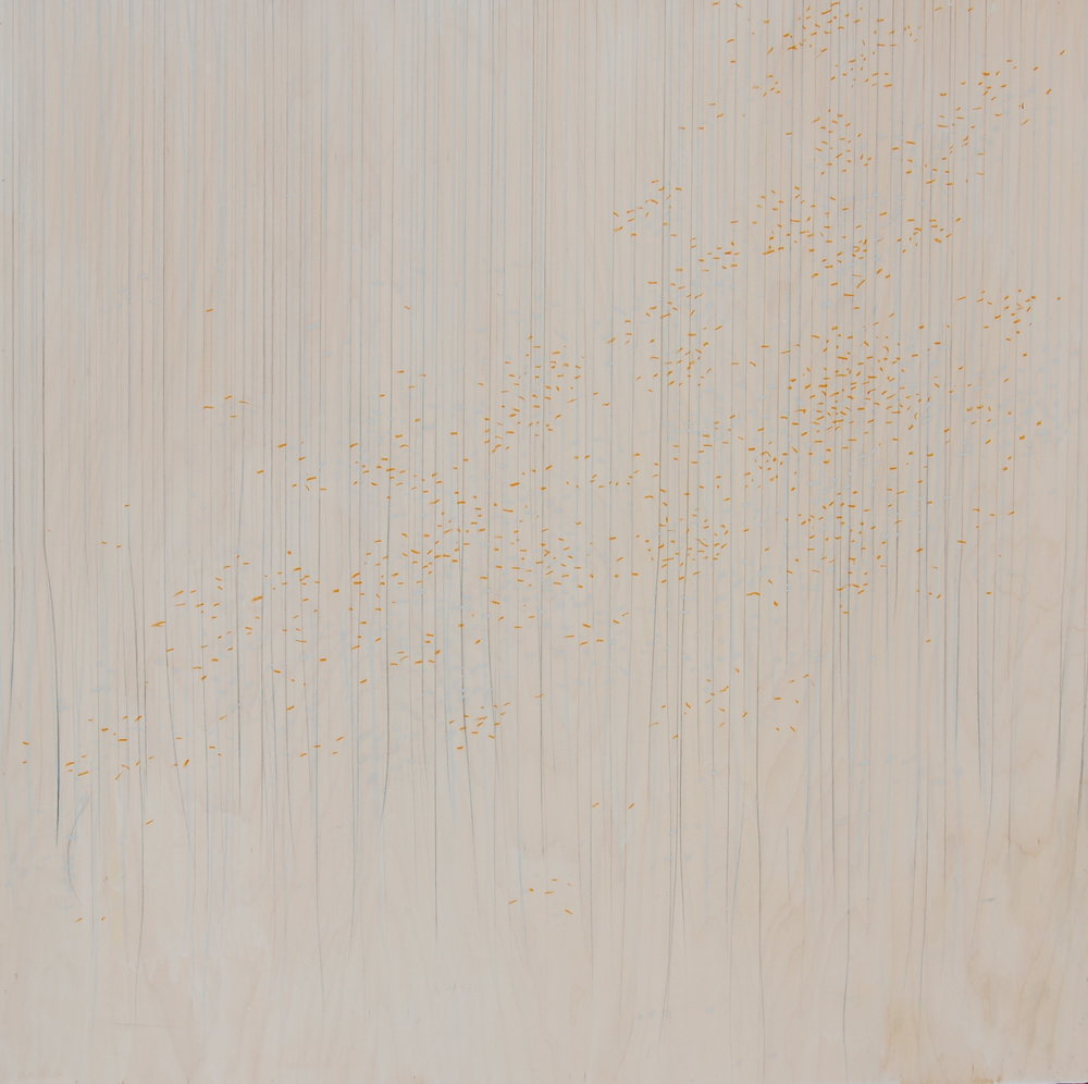#1, 2016  gesso, graphite, colored pencil & oil pastel on panel  36x36