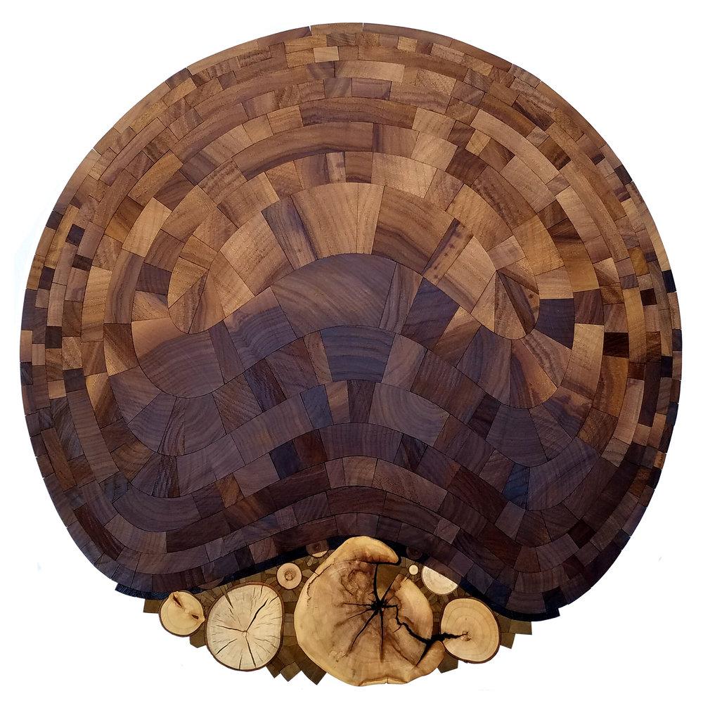 Chris DeKnikker  Rupture  collected wood  16x16x2