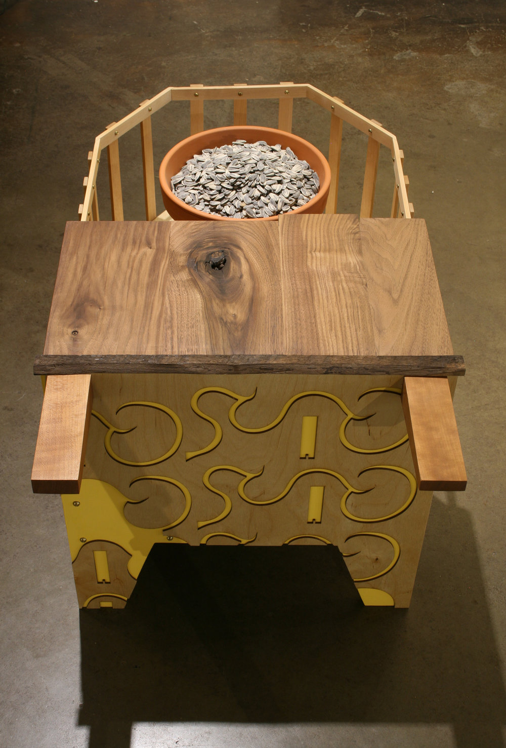 "Seed Planter  wood, clay & sunflower seeds  19"" x 37"" x 19"""