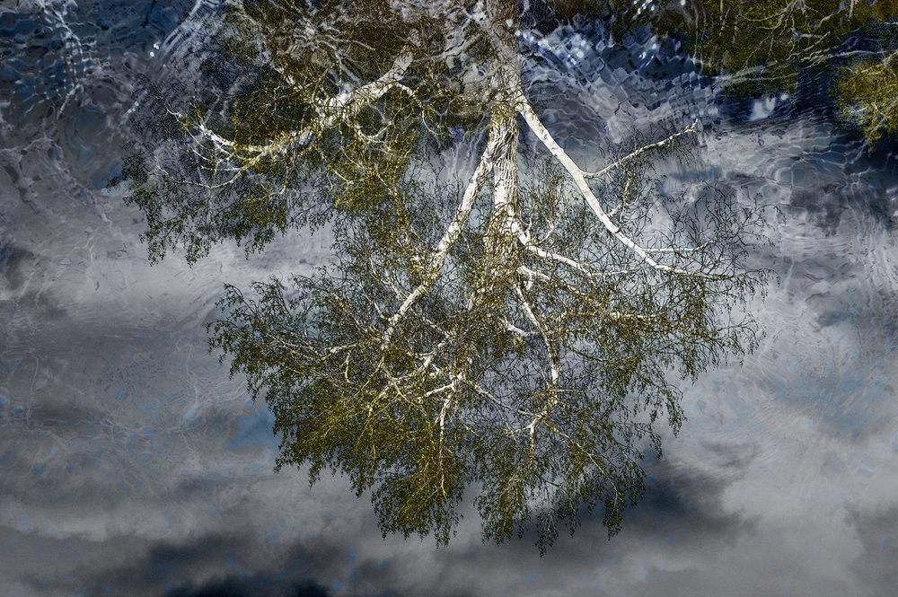 Mystic Pond Reflection