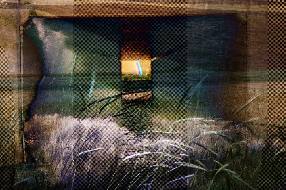 Wheat Rain