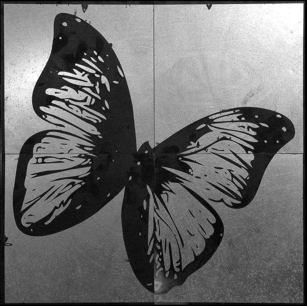 Butterfly Black  22 x 22  caustigram