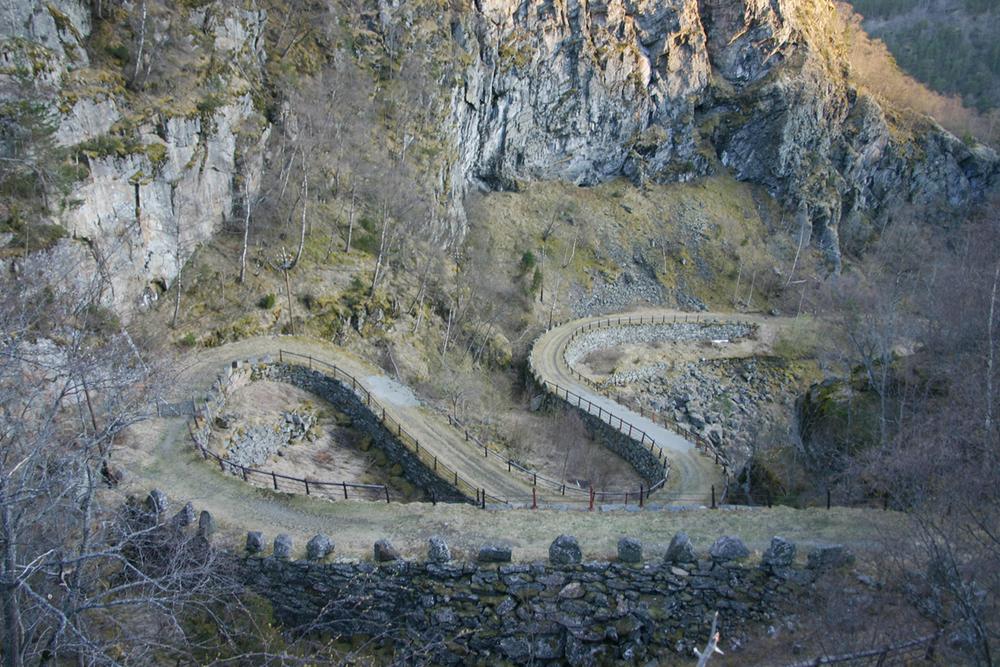Kongevegane i Vindhella-skaret ( Foto: Odd Helge Brugrand)