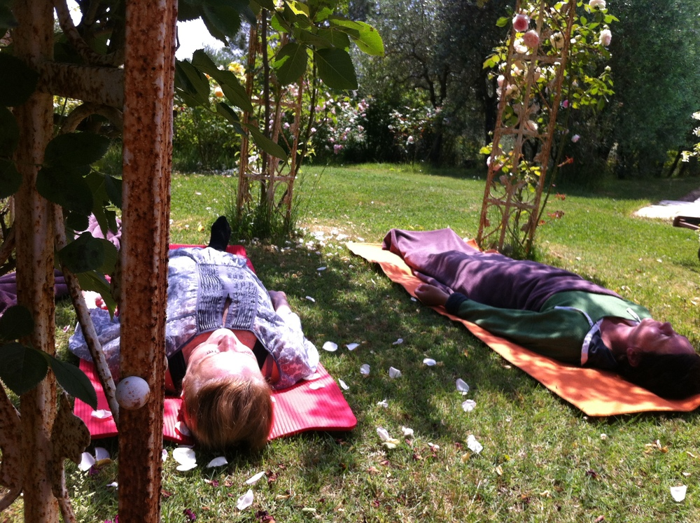 Yoga Nidra under the rose arches
