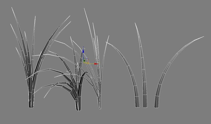 Tut_Grass_01.jpg