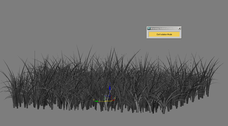 Tut_Grass_09.jpg