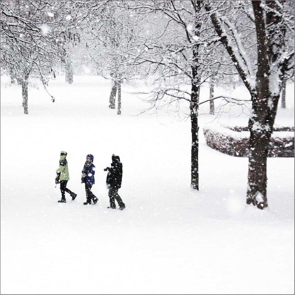 vinter i parken_2.jpg
