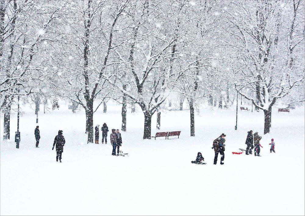 vinter i parken_7.jpg