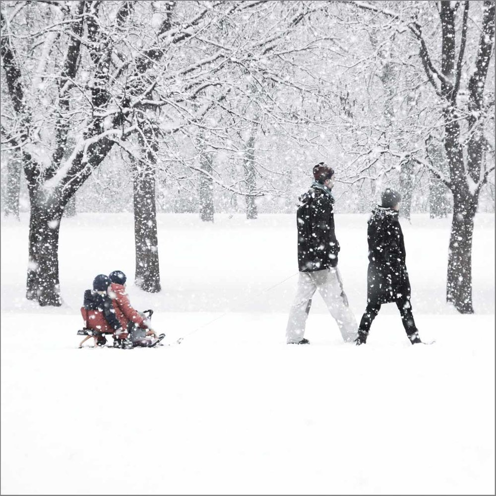 vinter i parken_3.jpg
