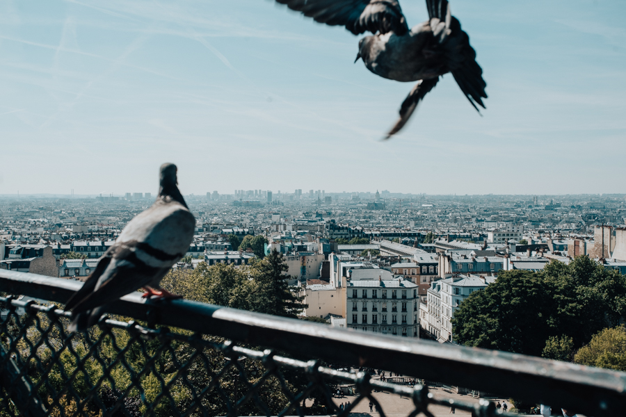 Paris_espen_div-07819.jpg