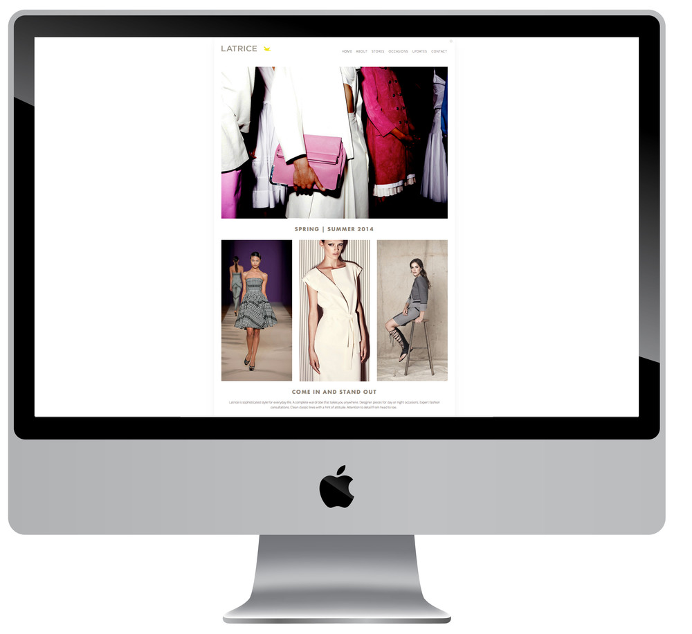 Website design for high end clothing boutique.