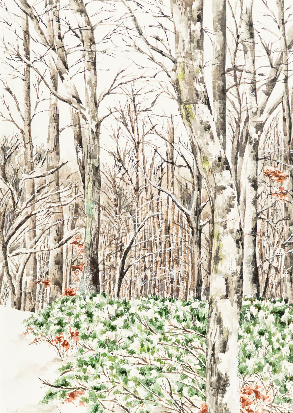 "Winter Trees 20 x 14.5"" Watercolor"
