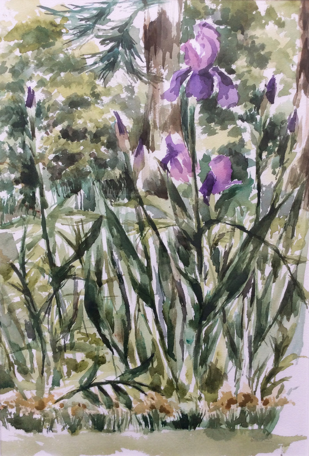 "Iris 19.5 x13.5"" Watercolor"