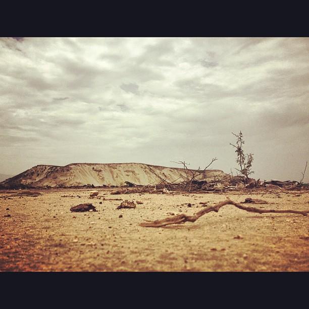 Desert #InstaSize #desert #landscape #haiti #gonaives  #reboisement @kakositoayiti