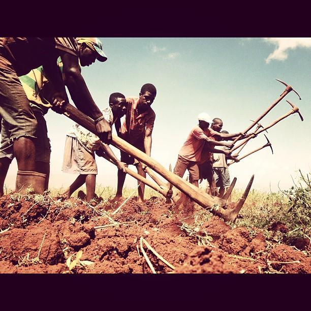Ayiti se yon kombit #ayitise #InstaSize #planteur #haiti #haititourism #fortoge