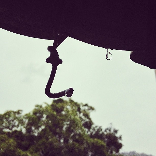 Rainy day… #drop #rain #dripping #water #haiti #nature