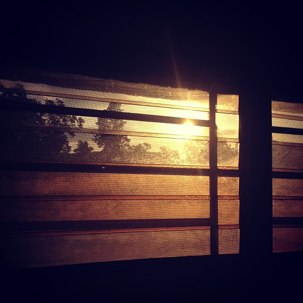 #GoodMorning #sunrise #window #silhouette #haiti #photography