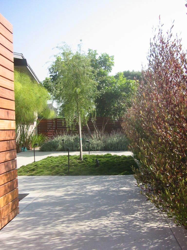 Palos Verdes 1.JPG