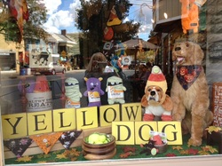 Yellow Dog's cute window. Always ready to celebrate the holidays. Be on the lookout for a new fuzzy friend hanging out in the window very soon!