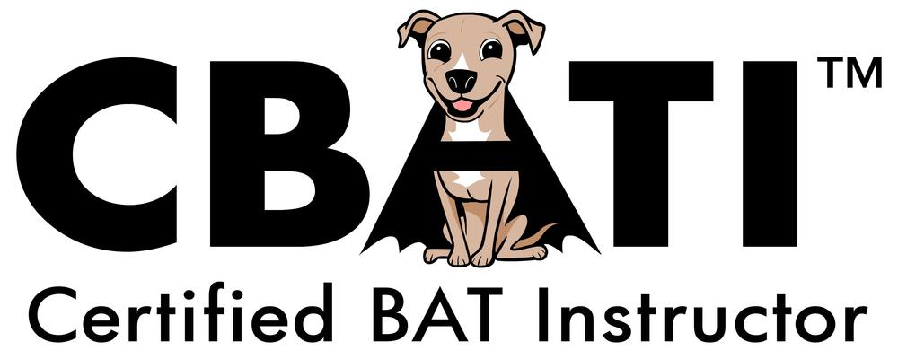 CBATI-color-logo.jpg