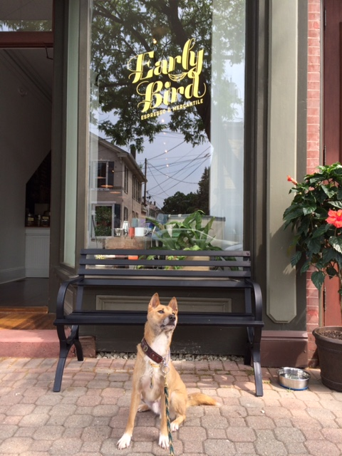 Journey loves his visits to Early Bird in Frenchtown NJ!