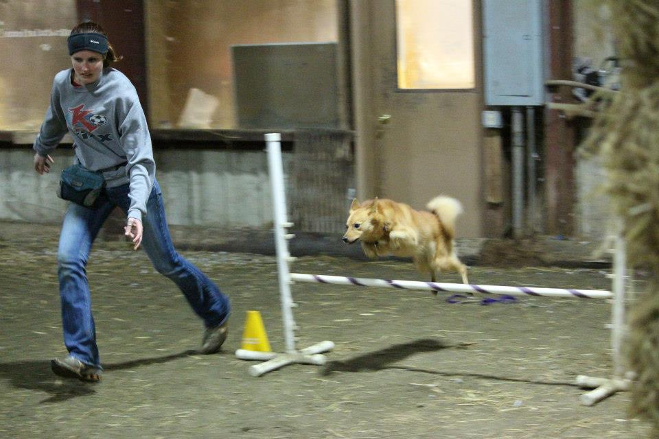 Agility is serious business!