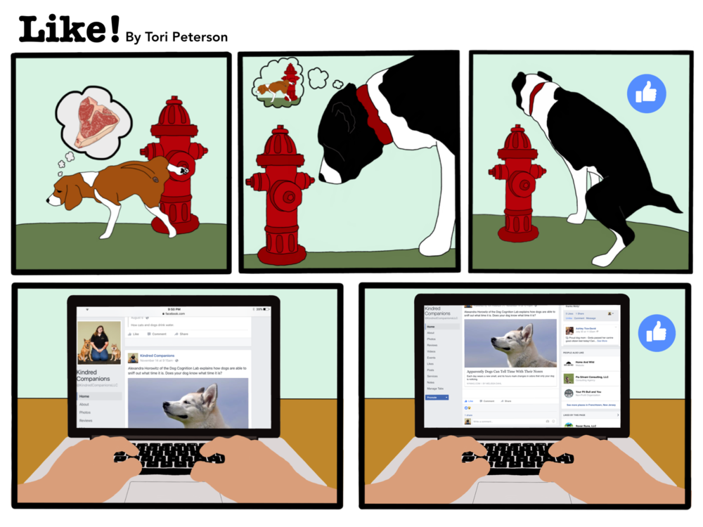 "Here a beagle is urinating on a fire hydrant and when the next dog walks up, she smells the beagle's pheromones and she marks the spot. To an extent, this is analogous to a person scrolling down facebook and ""liking"" a post."