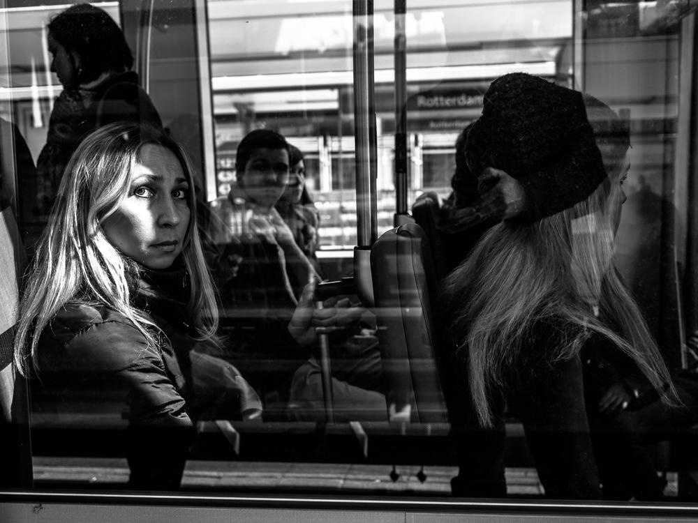 fm + rotterdam + 2013.jpg