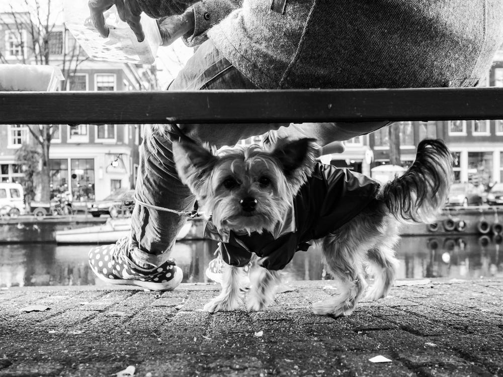 fokko muller street photography - 141206 - 008.jpg