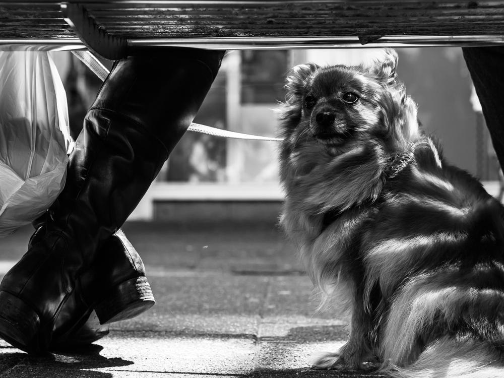 fokko muller street photography - 150509 - 001.jpg
