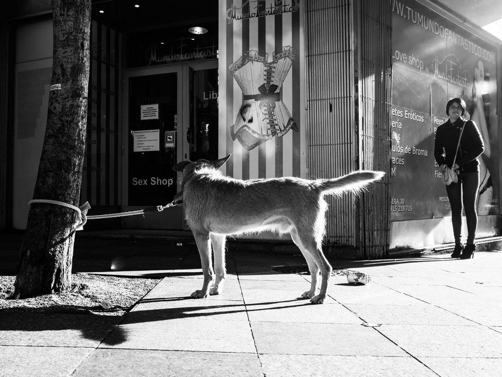 fokko muller street photography - 151129 - 001.JPG