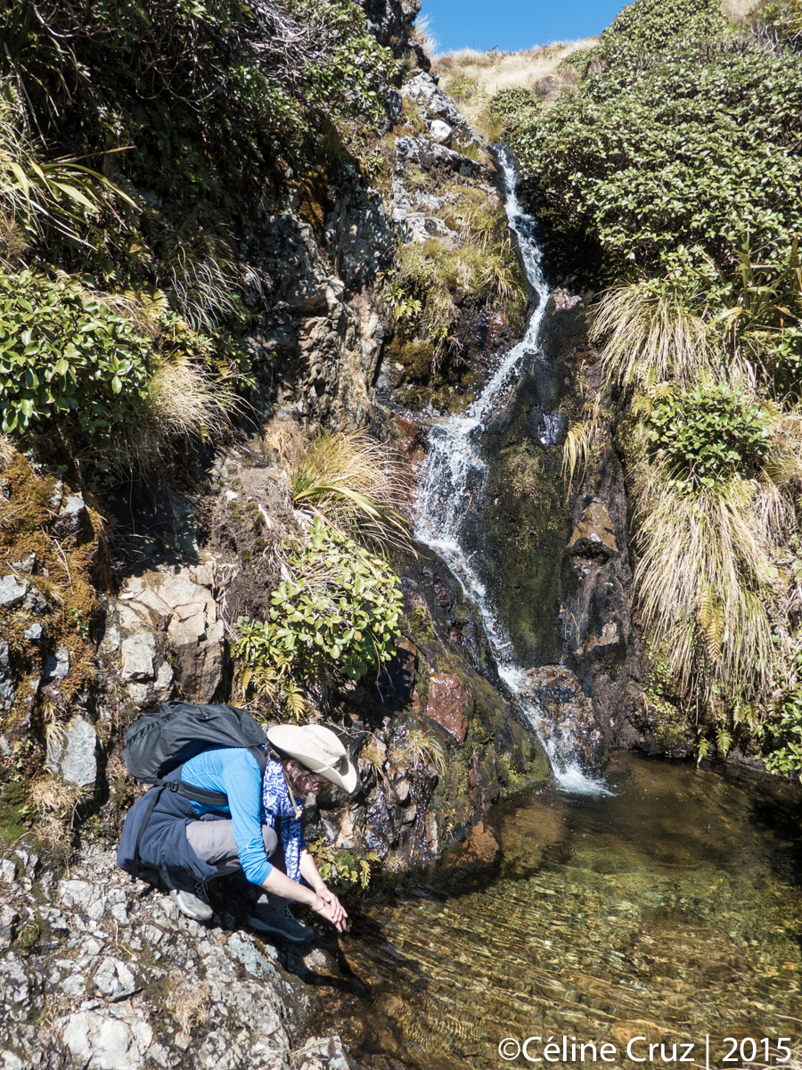 Small waterfall on Rangiwahia Hut trail