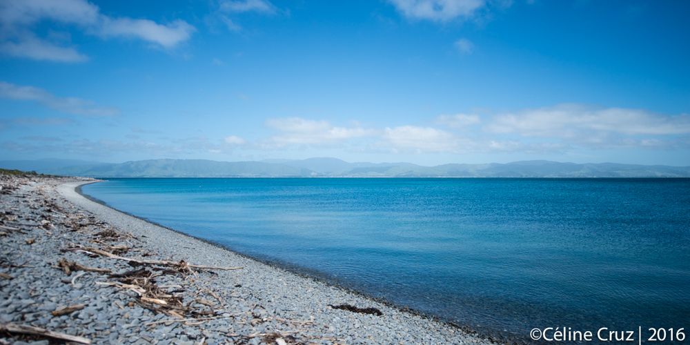 View of the North Island from Kapiti
