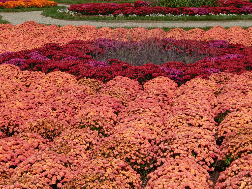 biltmore-gardens.JPG