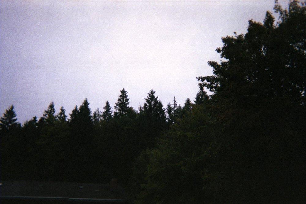 87120017.JPG