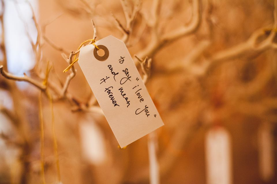 Wishing tree, hang your dreams.