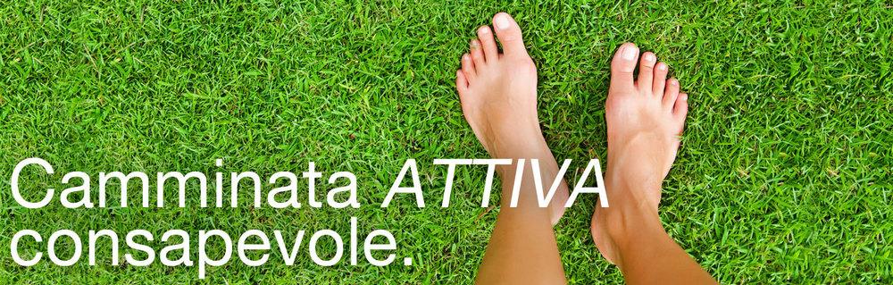Testata_Box_03.jpg