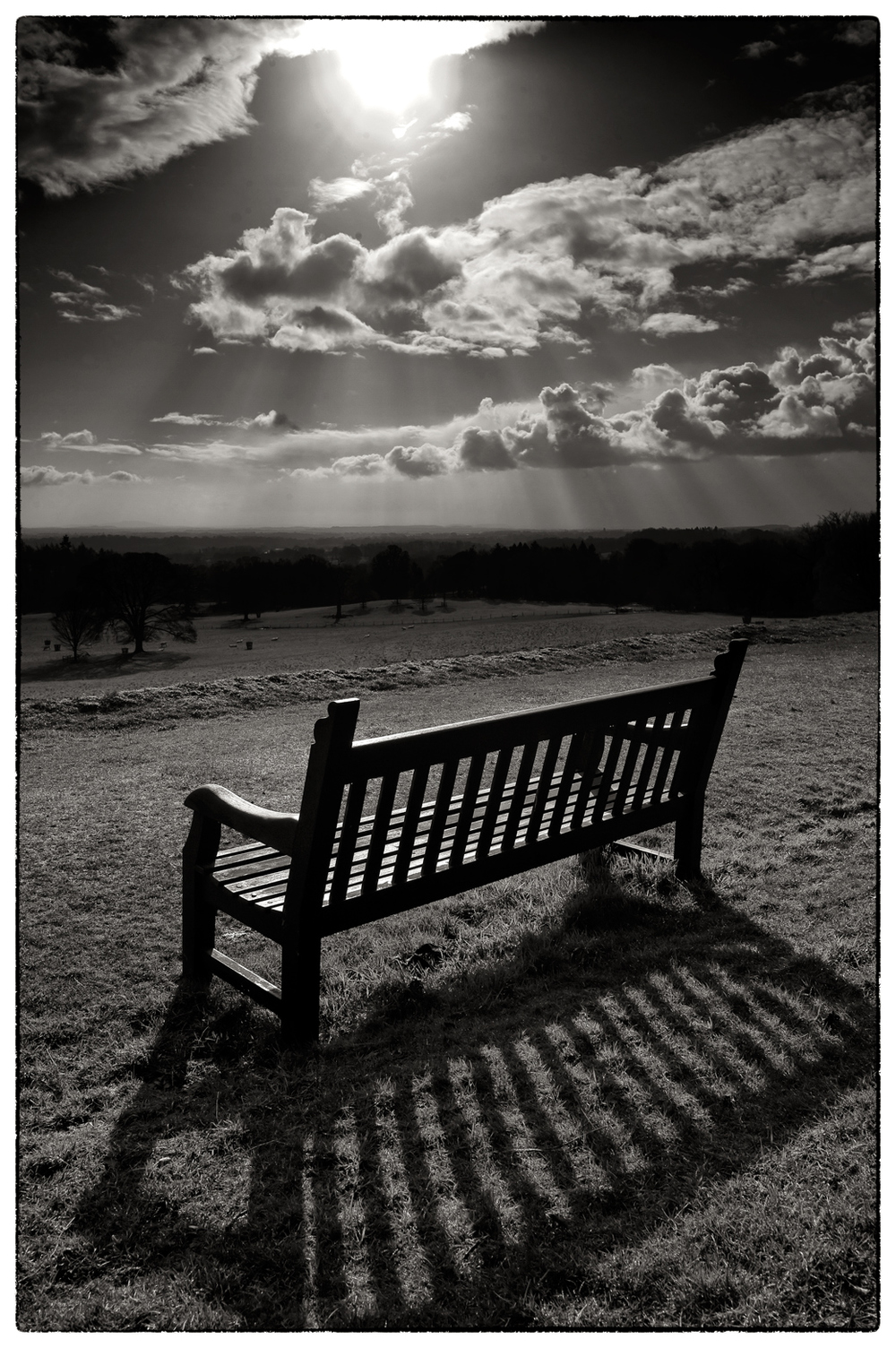 A bench with a view.