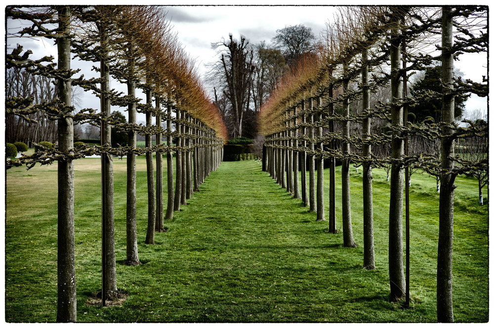 More symmetry at Erddig.