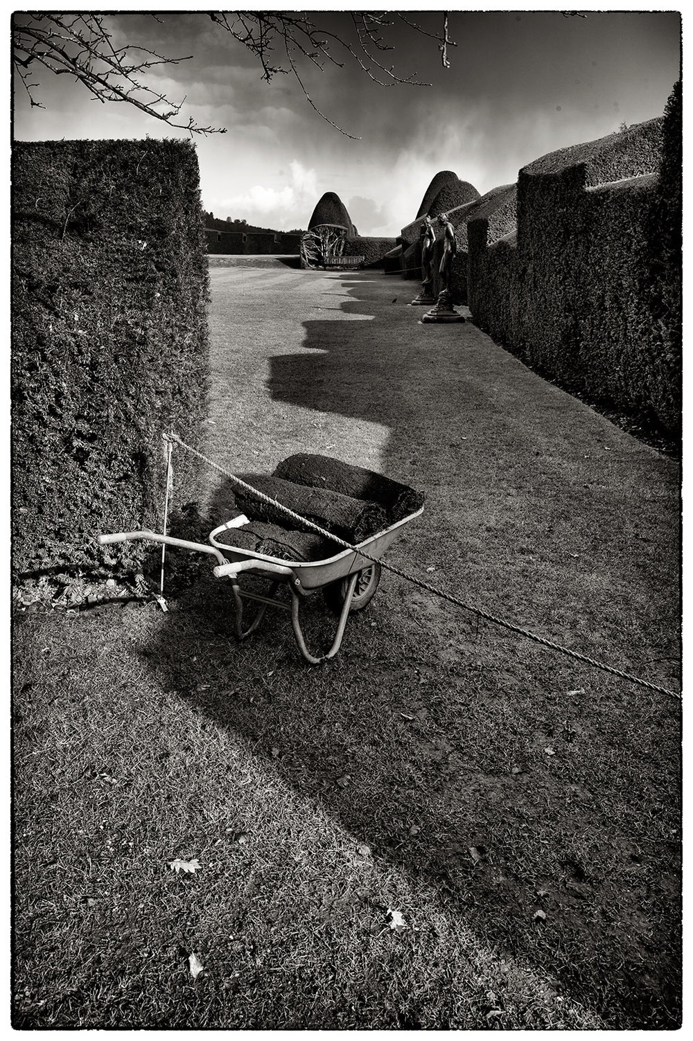 Abandoned wheelbarrow, Chirk.