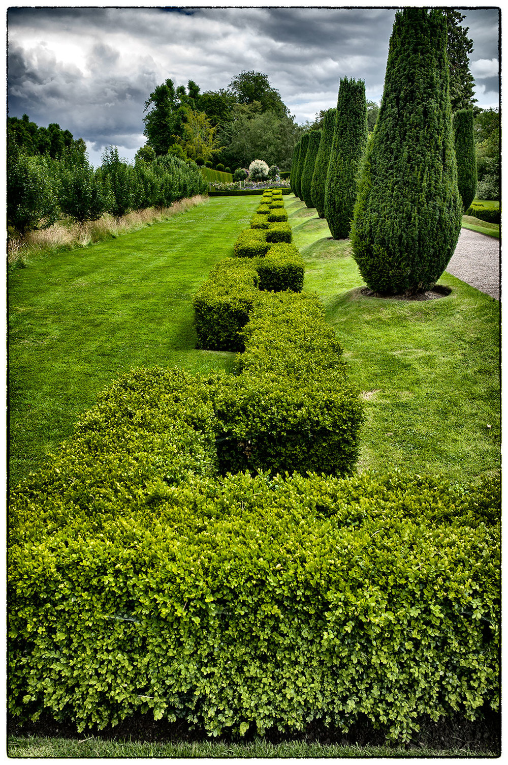Asymmetrical Hedges at Erddig.