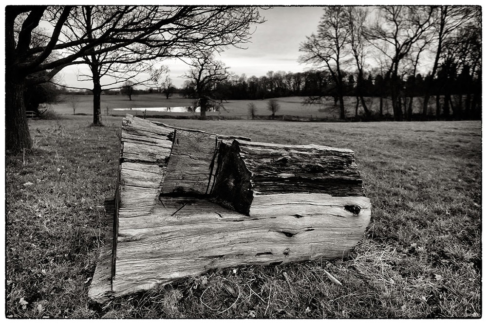 Log seat in the park at   Erddig  .