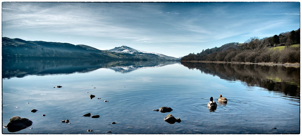 An early morning trip to Bala. By lunchtime the mist had lifted and the ducks were enjoying the lake.