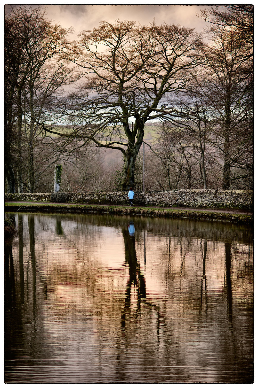(for yesterday!) - Down by the canal, Marple as the sun was starting to go down.