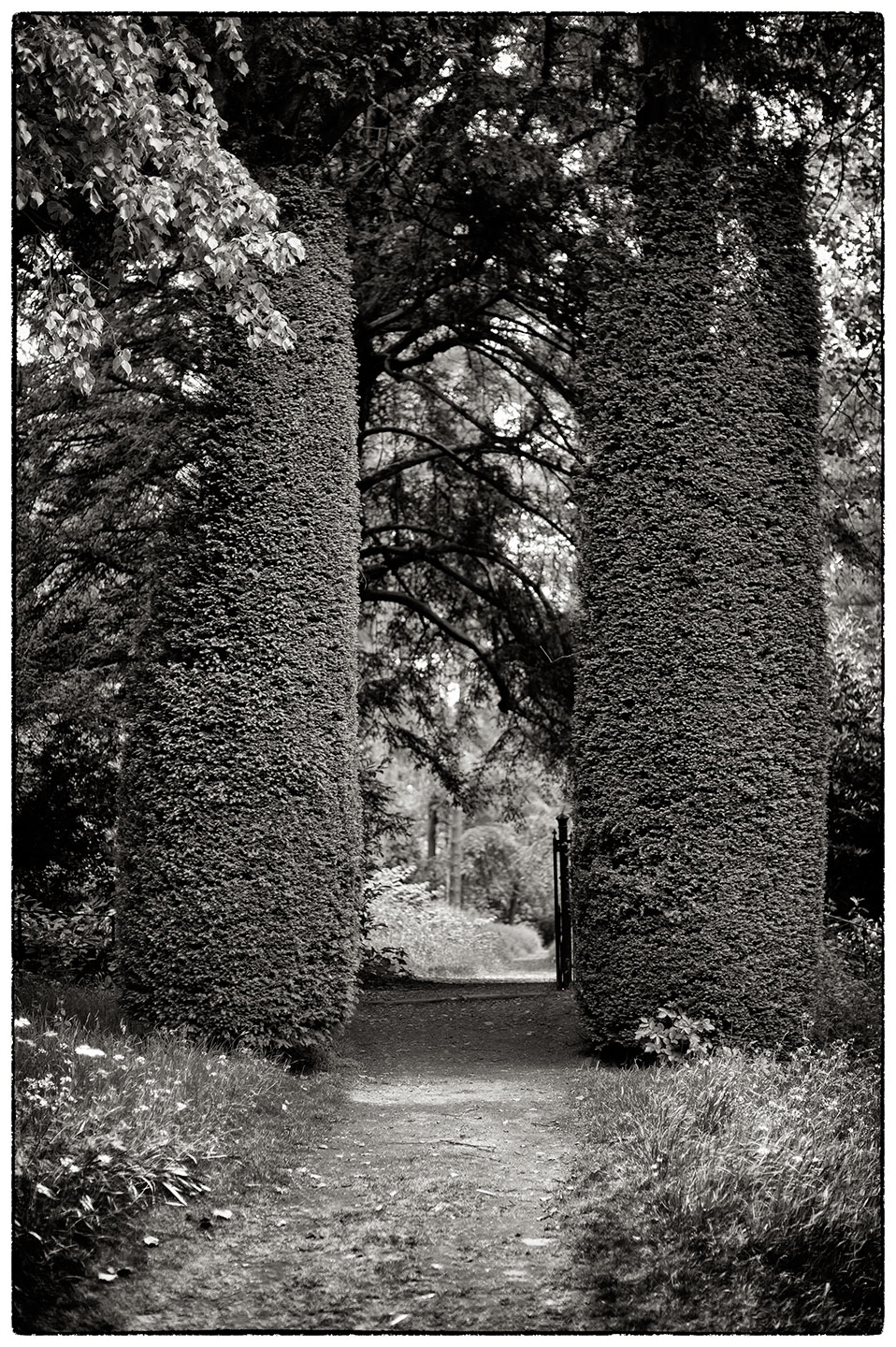 Two natural pillars forming a gigantic gateway.  Chirk Castle Gardens.