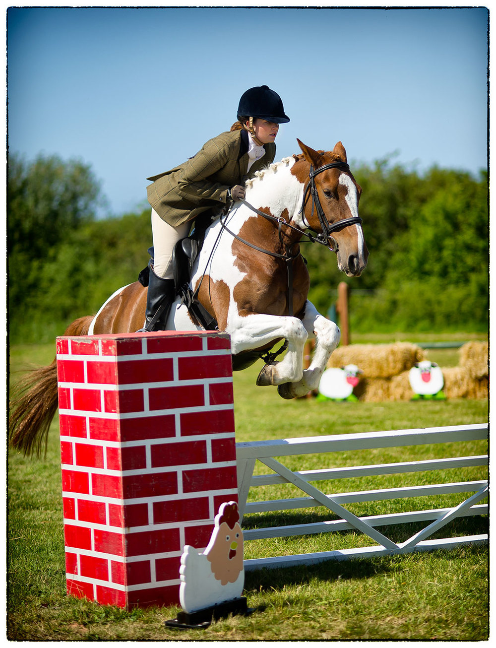 Alice and Willow jumping 'The Gate' at Greasby today.
