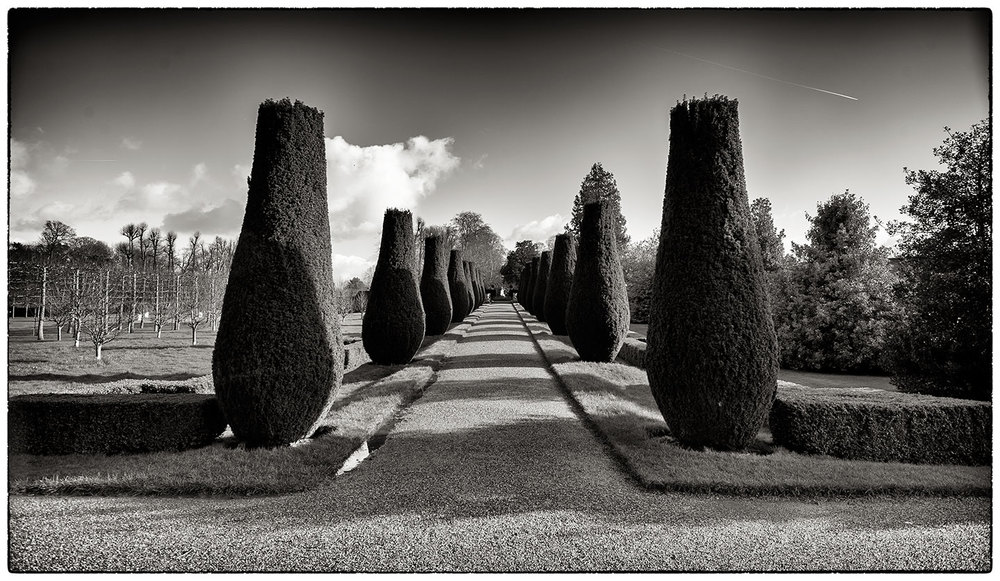 Rather well looked after trees at Erddig.