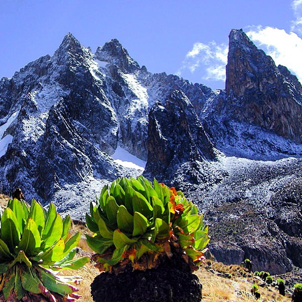 "Looking forward to some ""real"" climbing on Batian and Nellion next month! #mtkenya #RIPdiamondcolouir"