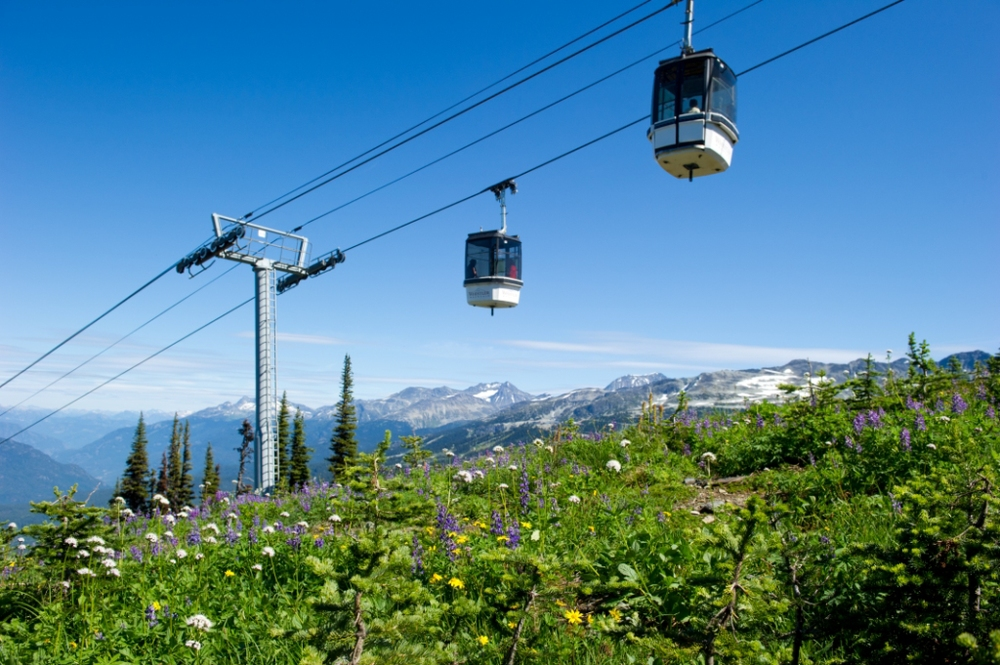 Alpine gondola ride and walk