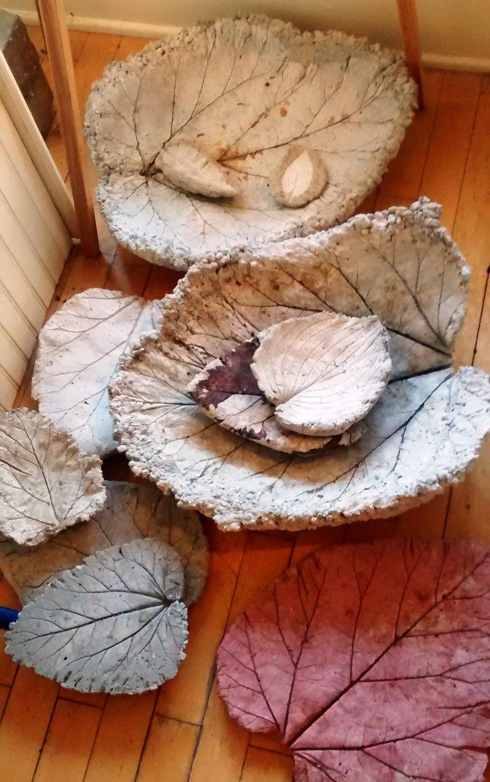 leafcasting.jpg